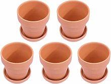 Cabilock 10 Set Mini Vasi di Terracotta con Base E