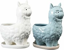 Cabilock - 2 vasi in Ceramica per Piante grasse,