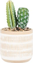 Cactus artificiali con vaso in gres beige