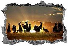 Canguro, Wall Art, Safari, Animali, 3D, Adesivo,