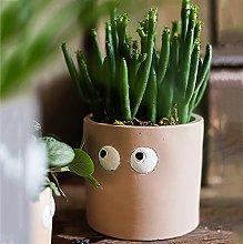 Carino Piccolo Vasi Per Interna Ourdoor Giardino