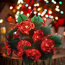 Catena Luminosa, 3M Ghirlanda Luminosa Rosa Fiore