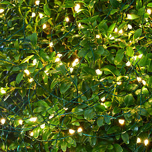 Catena luminosa LED Knirke da esterni, 160 luci