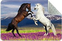 Cavallo, Zerbini Ingresso Porta Anteriore Tappeto