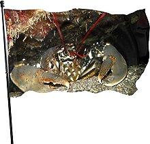 Cave Lobster Garden Flag Indoor Outdoor Flag 3x5