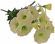 Cespuglio Petunia 38cm - Bianco