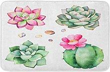 Collezione acquerello con piante grasse ghiaia