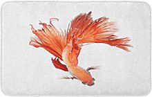 Colorato occhio Betta Pesce Siamese Combattimento