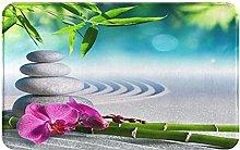 CONICIXI Zerbino Ingresso Casa Spa, orchidee di