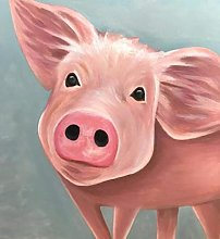 Cute Pig Animal Paint by Numbers per Adulti Kit di