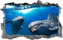 DDSY Delfino, adesivo, 3d, vita marina, murale,