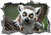 DDSY lemure, adesivo, 3d, animali, arte della