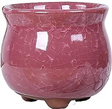 DealMux Fioriera Vaso da fiori Vasi da fiori in