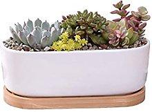 DealMux Vaso per piante in ceramica bianca