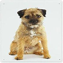 DECISAIYA Poster Targhe in Metallo Border Terrier