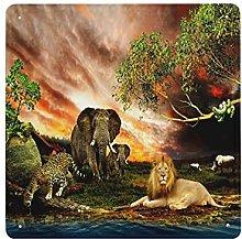 DECISAIYA Poster Targhe in Metallo Elefante della