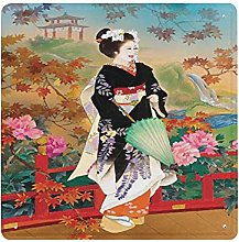 DECISAIYA Poster Targhe in Metallo Giappone Geisha