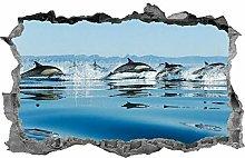 Delfino, decalcomania, adesivo, vita marina,