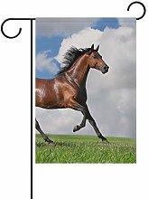 DEZIRO - Bandiera da Giardino con Cavallo sotto
