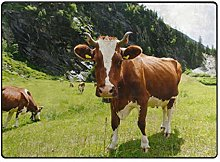 DEZIRO - Zerbino da Giardino a Forma di Mucca,
