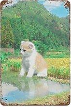 DJNGN Beautiful Country Cute Cat Retro pittura in