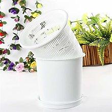 Doolland - Vaso per orchidee in plastica, con fori