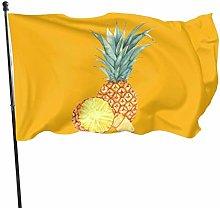 DRXX Bandiera Ananas divertente150x90cm Banner per