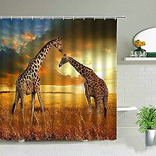 Elefante animale africano leone zebra leopardo