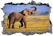 Elefante, arte della parete, decalcomania, 3d,