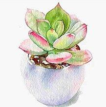Fai da Te Pittura Diamante 5D Dipinto Cactus