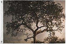 FANTAZIO - Bandiera da giardino con leopardo