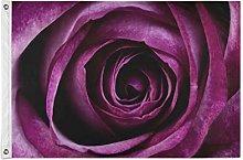 FANTAZIO - Bandiera da giardino con rose viola