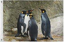 FANTAZIO - Bandiera da giardino, motivo: pinguino