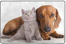 FANTAZIO, tappeto dritto per cani e gatti, per