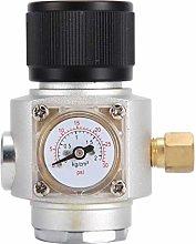 Fditt Mini regolatore Gas Homebrew CO2 con la