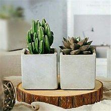 FEELOONS 1 vaso da fiori in cemento vaso quadrato