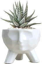Fioriera in ceramica bianca Fioriera succulenta