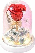 Forever Rose, lampada da comodino con fiore rosa