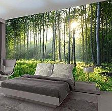 Foto Wallpaper 3D Verde Foresta Natura Paesaggio