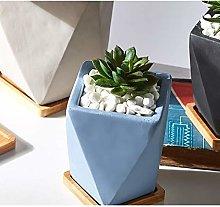 freneci Vaso da Giardino succulente con Vassoio di