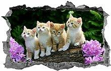 Gattini, adesivo, adesivo, gattini carini, 3D,