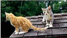 Gatto Sul Tetto 35 Pezzi Puzzle In Legno Sicuro E