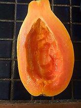 Germinazione I Semi: 20 Maui Dolce Papaya Semi