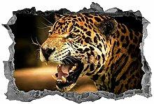 Ghepardo, Safari, 3D, adesivo, animali, adesivo,