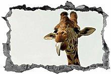 Giraffa, adesivo, 3d, animali, decalcomania, arte