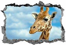 Giraffa, decalcomania, adesivo, 3d, animali, arte