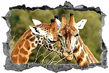 Giraffe, adesivo, animali, 3D, safari, adesivo,