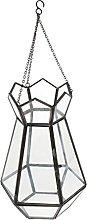 Goodvk Terrario Geometrico Vaso di Vetro del Vaso