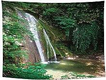 haoyunlai Forest Plant Landscape Tapestry Natural