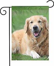 Happy Golden Retriever - Bandiere da giardino per